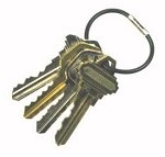 Tamper Proof Cable Key Rings <img src=